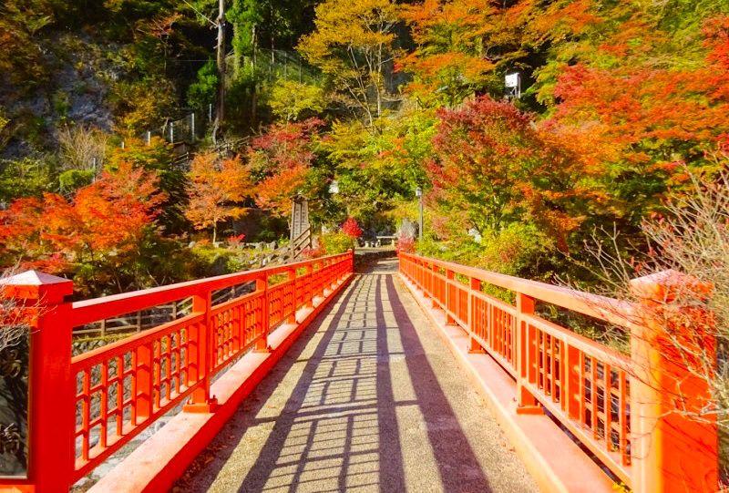秋の絶景を見に行こう! 東京都内から日帰りで行ける紅葉スポット7選