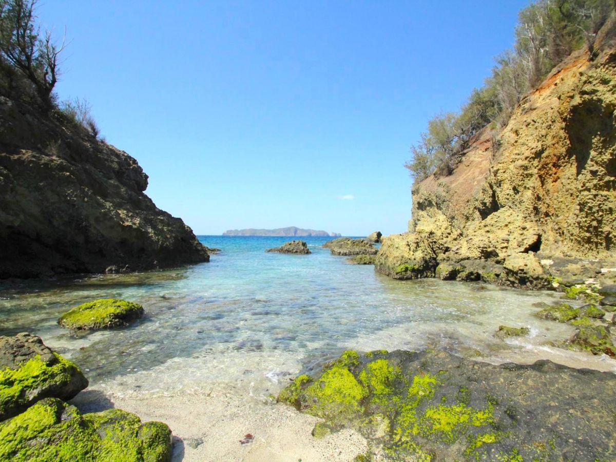 【小笠原】北から南までぐるっと探検!「母島」の観光スポットめぐり