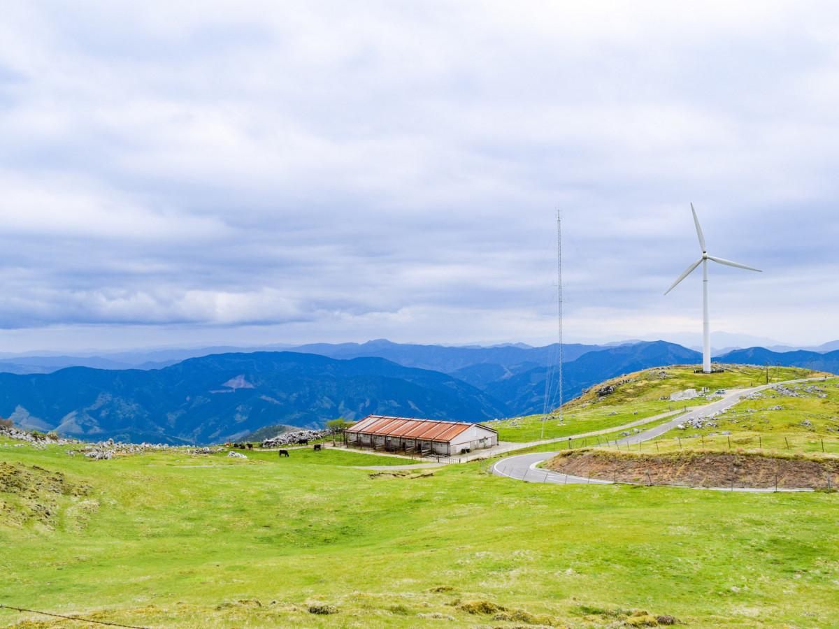 大パノラマを堪能!「四国カルスト」で絶景ドライブを楽しもう