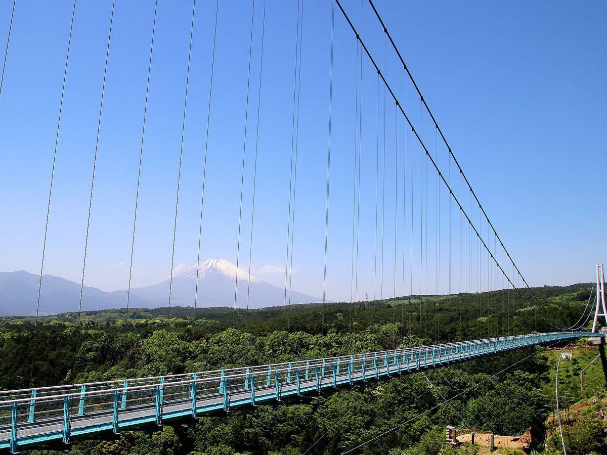 富士山を眺めながら、日本一長い人道吊り橋「三島スカイウォーク」を渡ろう!