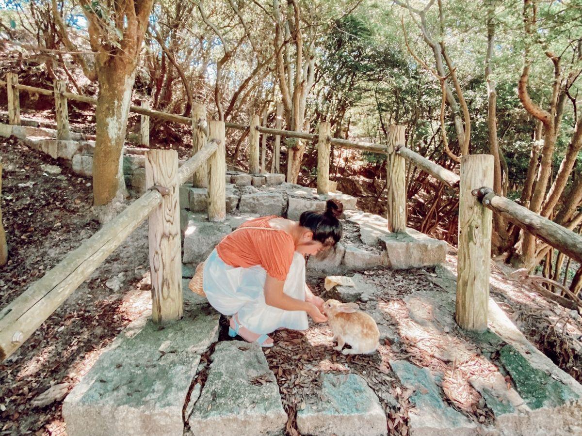 【広島】1,000匹のうさぎと戯れる癒しの島!