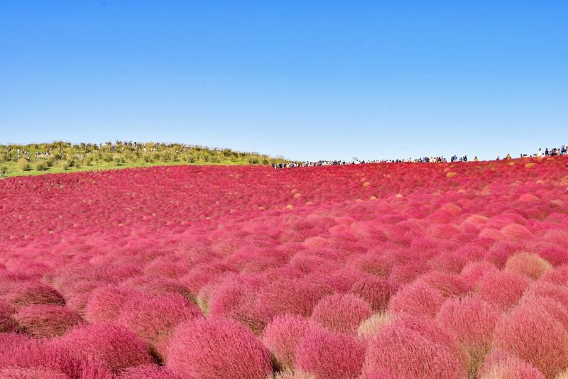 一度は行きたい日本国内の絶景スポット30! 月ごとのおすすめをご紹介