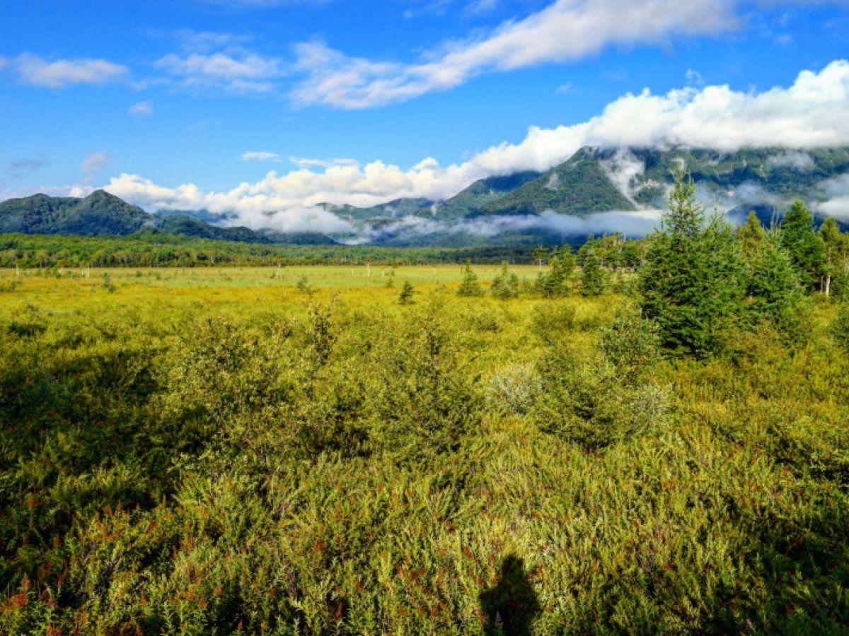 自然いっぱい!栃木県のおすすめ絶景スポット5選