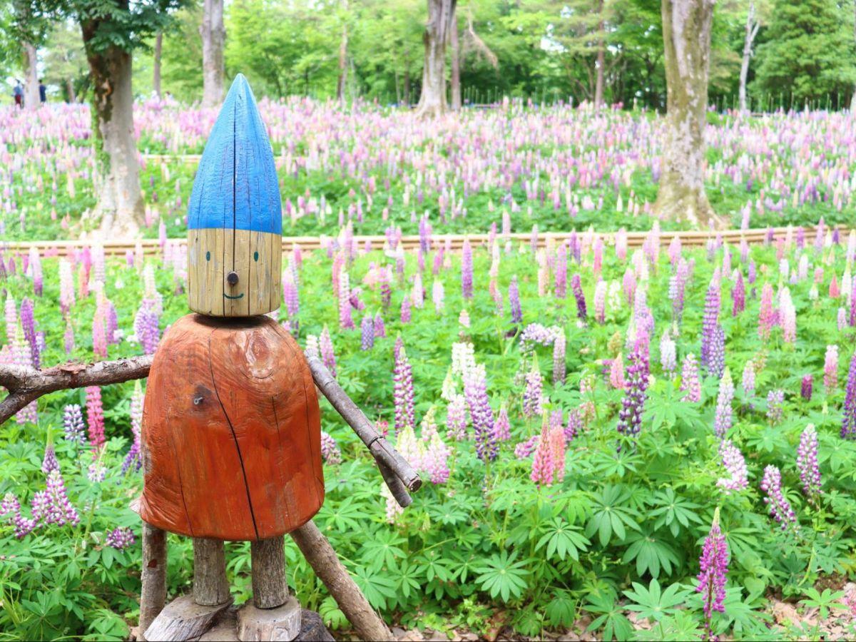 【埼玉県】お花畑に癒される。国営武蔵丘陵森林公園をのんびり散歩