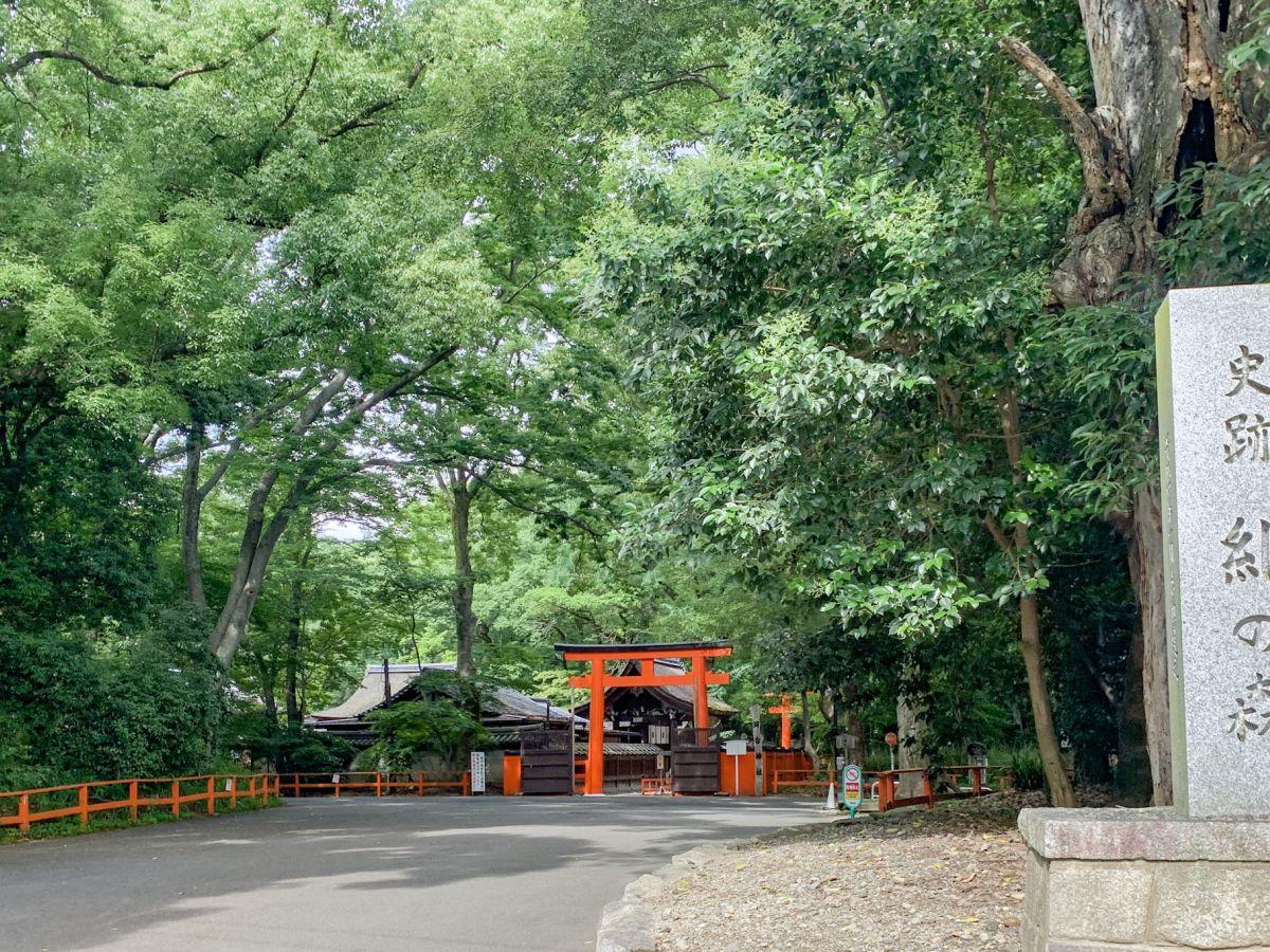 【京都】美しい自然に癒される「糺の森」をぶらり。美麗祈願で人気の「河合神社」も
