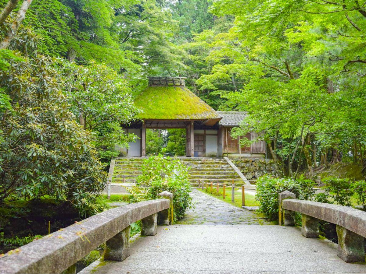 【京都】知る人ぞ知る名刹「法然院」へ… ガラスアートの枯山水と山門を覆う苔が美しい!